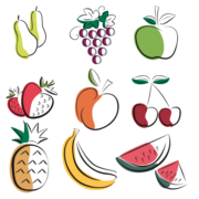 Fruits Illustrator vector draw