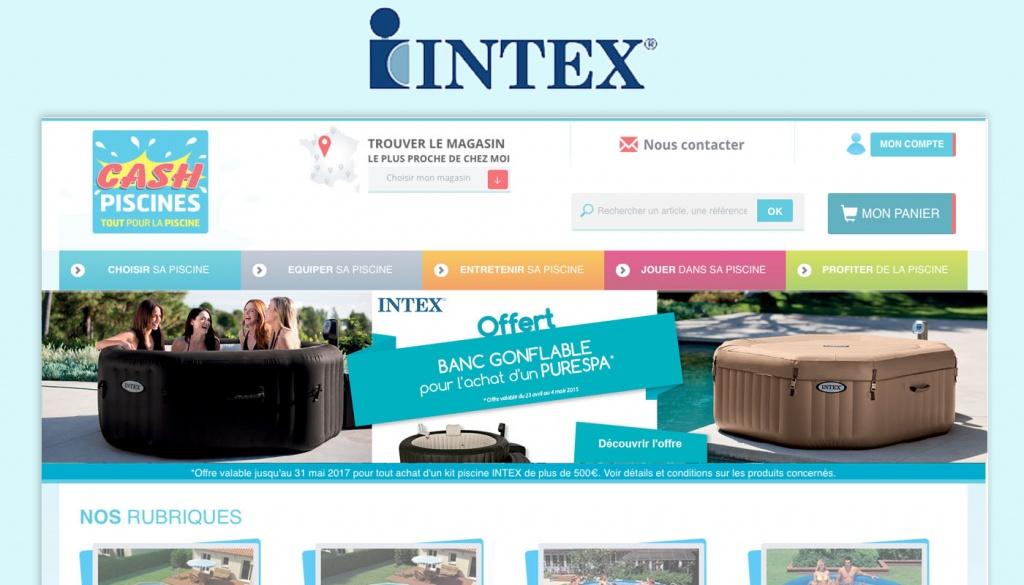 intex1